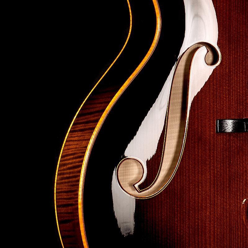 custom built guitar by Scharpach