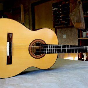 Scharpach Concertura Santos Hernandez