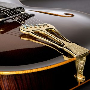 Vienna Archtop Guitar, custom built by Scharpach